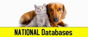 spay, neuter, cats, dogs, kitten, puppy, petsnmore.org, list of low cost to free spay neuter clinics, list of shelters and rescue groups