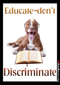 animal, dog, cat, pet, animal, inspiring quotes for animal lovers, petsnmore.org, pit bull,