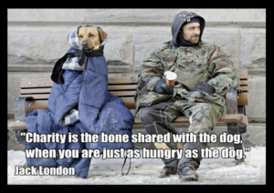 animal, dog, cat, pet, animal, inspiring quotes for animal lovers, petsnmore.org, charity