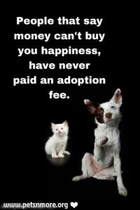 animal, dog, cat, pet, animal, inspiring quotes for animal lovers, petsnmore.org, adoption fee,