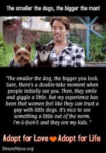 animal, dog, cat, pet, animal, inspiring quotes for animal lovers, petsnmore.org, Jonathan Scott