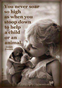 animal, dog, cat, pet, animal, inspiring quotes for animal lovers, petsnmore.org, child